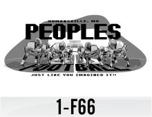 1-f66