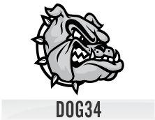 dog34