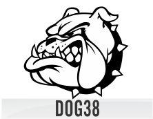 dog38