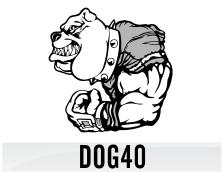 dog40