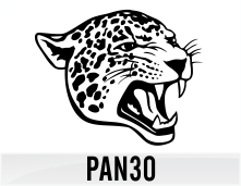 pan30