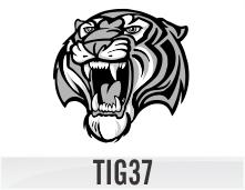 tig37